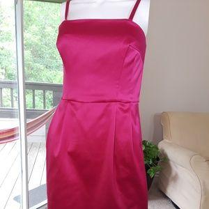 Express Design Studio Corset Pink Dress